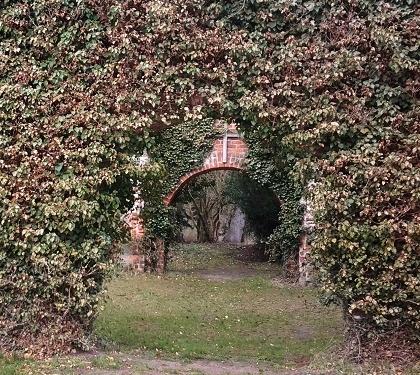 Ruine des Zisterzienserklosters Himmelfort - Foto: St. B.